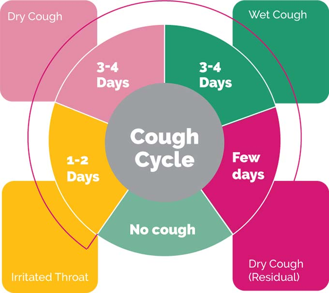 cough-cycle.